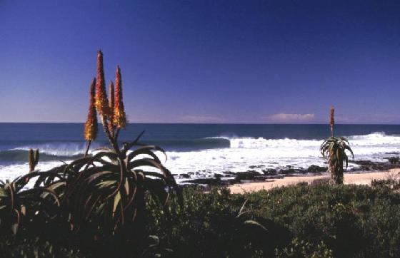 744967-travel_picture-jeffreys_bay